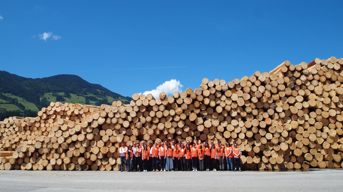 Wooden buildings - a solution to climate change?  1