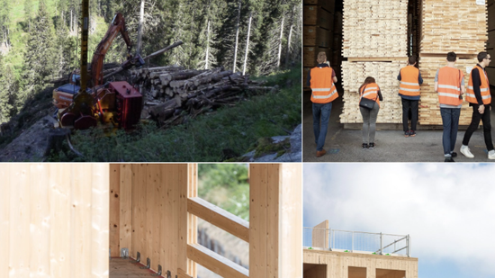 From field to factory the future of timber housing!