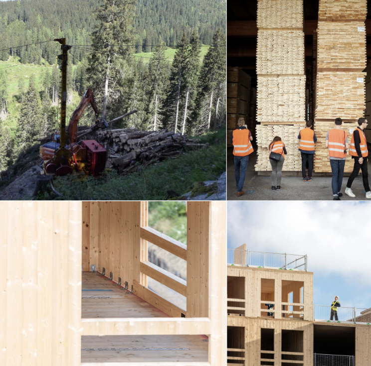 From field to factory the future of timber housing!  1