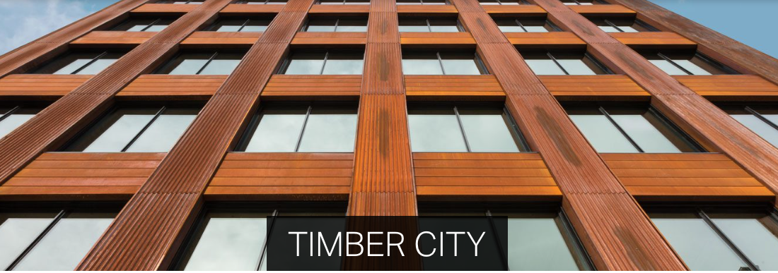 Timber City exhibition extended