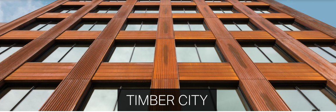 Timber City exhibition extended 1